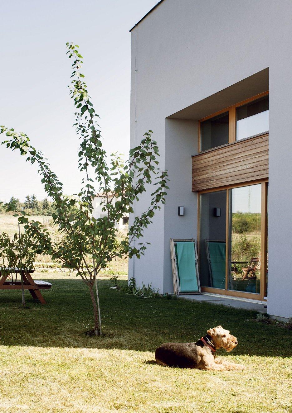 Zapustenie okien chráni miestnosť pred ostrým slnečným svetlom avytvára vinteriéri hlboké niky pre vstavaný nábytok.