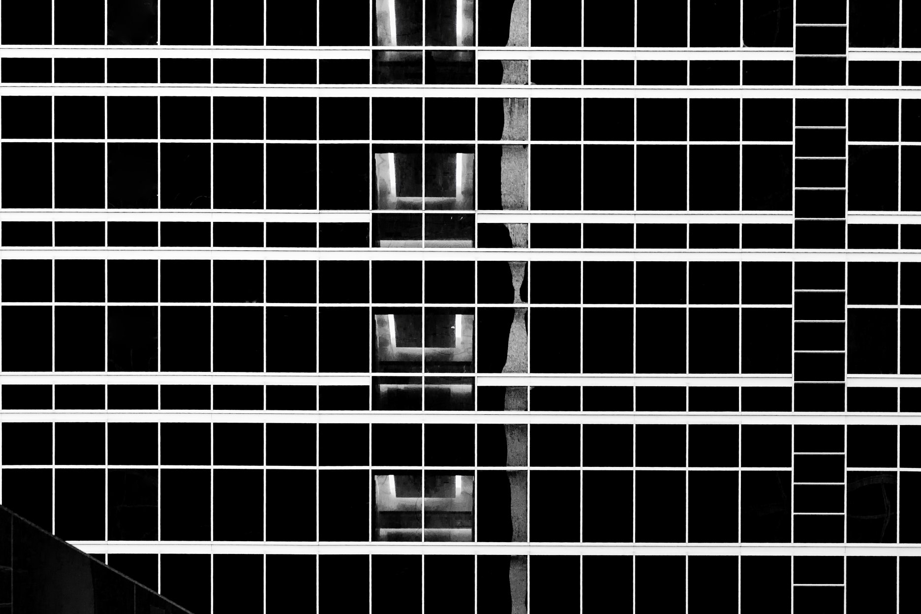 The Grid, City of Capitals, Moscow, 2017